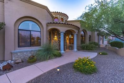 Tucson Single Family Home For Sale: 1310 W Appian Place