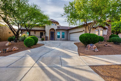 Marana Single Family Home Active Contingent: 13037 N High Hawk Drive