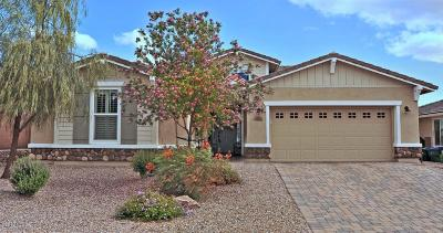 Marana Single Family Home For Sale: 7185 W Cactus Flower Pass