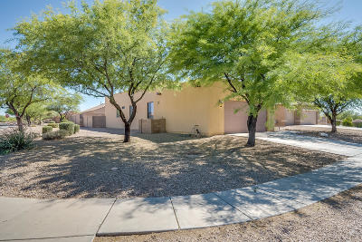 Pima County Single Family Home For Sale: 6509 W Winter Valley Way