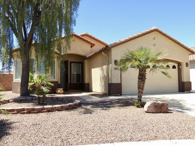 Continental Ranch Sunflower Single Family Home Active Contingent: 7599 W Summer Scene Drive