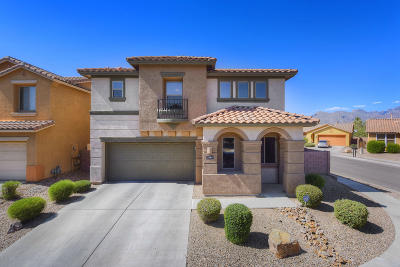 Tucson Single Family Home For Sale: 1584 W Homecoming Way
