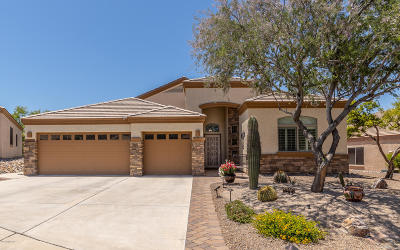 Marana Single Family Home Active Contingent: 5349 W Calico Cactus Court