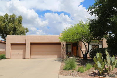 Pima County, Pinal County Single Family Home Active Contingent: 7647 E Golden River Lane