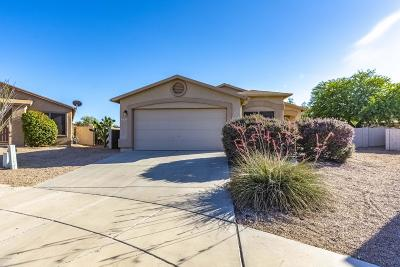 Single Family Home Active Contingent: 8150 S Sunny Sky Place