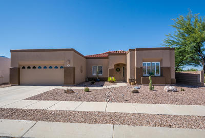 Oro Valley Single Family Home For Sale: 11966 Potosi Point Drive