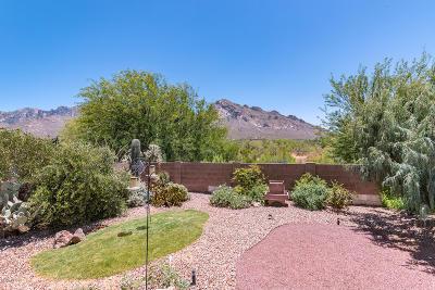Tucson Single Family Home For Sale: 254 E Shore Cliff Place