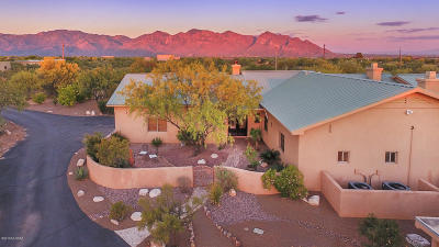 Oro Valley Single Family Home For Sale: 12151 N Camino Del Plata