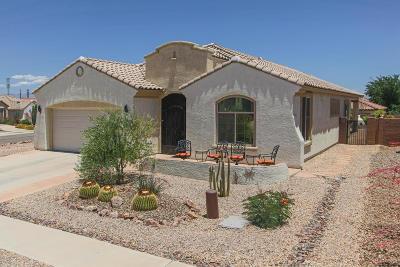 Sahuarita Single Family Home For Sale: 780 W Camino Del Rosal