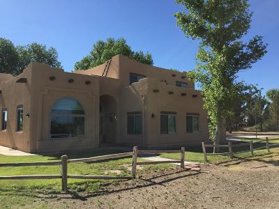 Cochise County Single Family Home For Sale: 3096 N Circle I Road