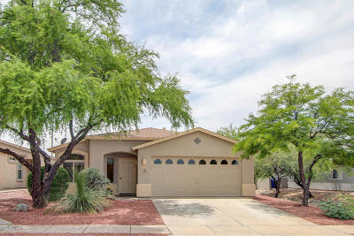 Pima County, Pinal County Single Family Home For Sale: 8276 S Lost Mountain Road