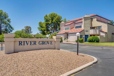 Tucson Condo For Sale: 4203 N River Grove Circle #202