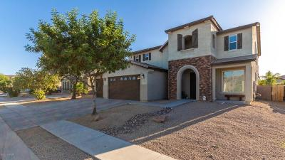 Pima County Single Family Home For Sale: 6802 S Twinberry Drive