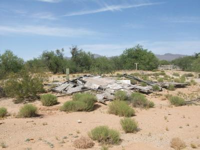 Residential Lots & Land For Sale: 10460 W Bopp Road