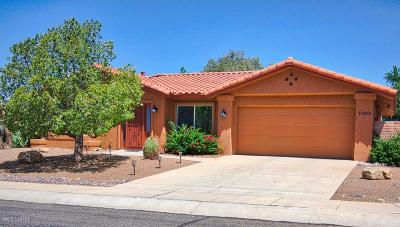 Oro Valley Single Family Home For Sale: 14598 N Lone Wolf Lane