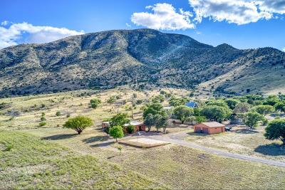 Cochise County Single Family Home For Sale: 5820 E Prince Placer Road