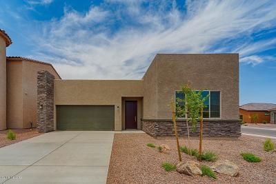 Oro Valley Single Family Home For Sale: 209 E Brookdale Way