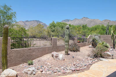 Pima County, Pinal County Single Family Home For Sale: 5857 N Golden Eagle Drive