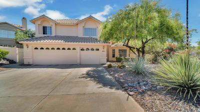 Oro Valley Single Family Home For Sale: 10968 N Black Canyon Court