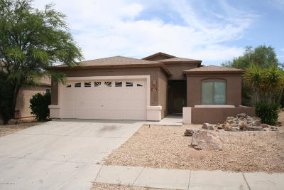Pima County, Pinal County Single Family Home For Sale: 7281 S Canterbury Tale Drive
