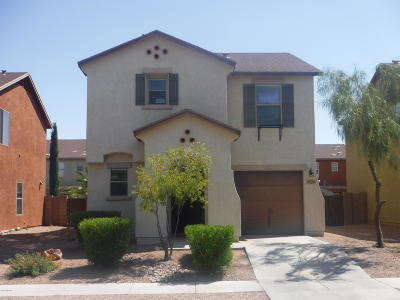 Pima County, Pinal County Single Family Home Active Contingent: 6939 S Blueeyes Drive N