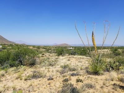 Residential Lots & Land For Sale: S Sierrita Mountain Road
