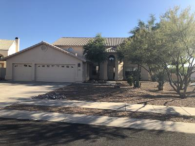 Oro Valley Single Family Home For Sale: 161 W Drover Place