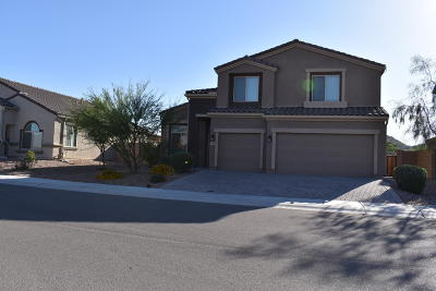 Marana Single Family Home For Sale: 9740 N Havenwood Way