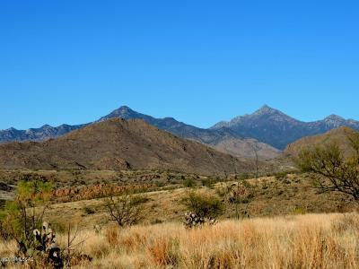 Tubac Residential Lots & Land For Sale: Silver Mine Trail #56