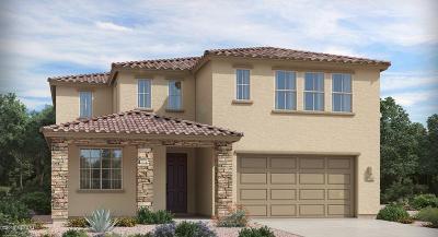 Pima County Single Family Home For Sale: 7374 S Via Casa Elegante