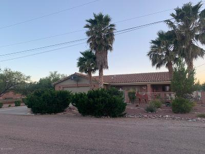 Rio Rico Single Family Home For Sale: 1428 Calle Morelia