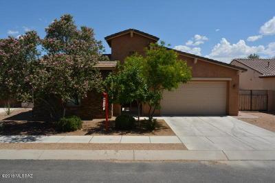 Single Family Home For Sale: 671 W Camino Sorpresa