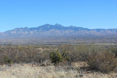 Tubac Residential Lots & Land For Sale: 40 Caracal Pointe