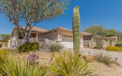 Marana Single Family Home Active Contingent: 13537 N Holly Grape Drive