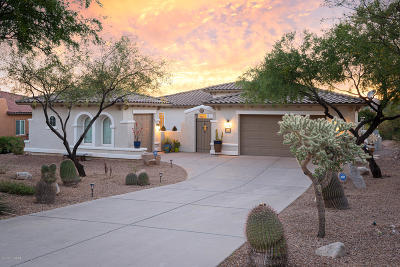 Oro Valley Single Family Home For Sale: 12735 N Morgan Ranch Road