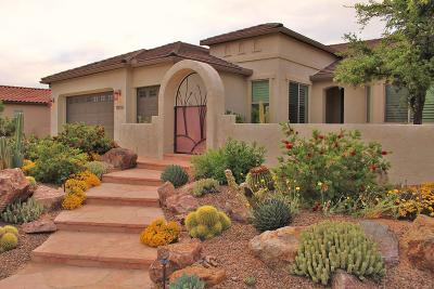 Pima County, Pinal County Single Family Home For Sale: 60674 E Arroyo Grande Drive