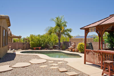Oro Valley Single Family Home For Sale: 11961 N Sage Brook Road