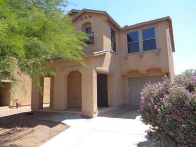 Pima County, Pinal County Single Family Home For Sale: 7041 S Ladys Thumb Lane