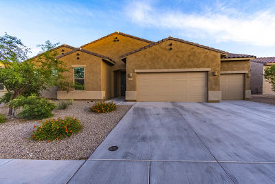 Single Family Home For Sale: 5893 W Yuma Mine Circle