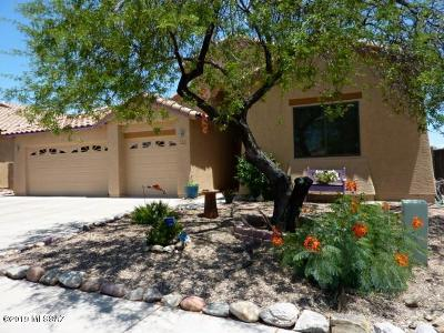 Single Family Home For Sale: 3395 S Prism Sky Drive