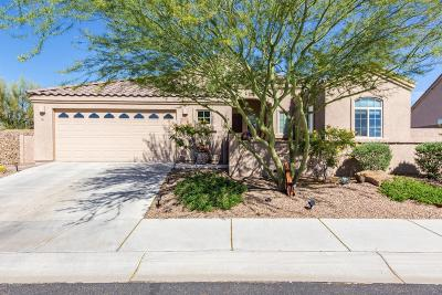 Marana Single Family Home For Sale: 12660 N Sunrise Shadow Drive