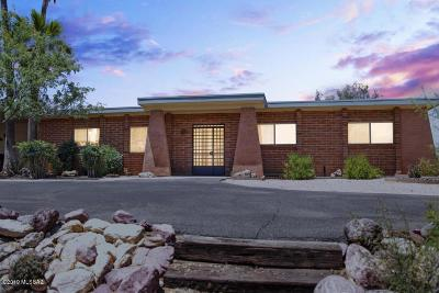 Pima County, Pinal County Single Family Home For Sale: 3475 N Tres Lomas Drive