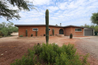 Tucson Single Family Home For Sale: 1830 W Placita Del Coyote