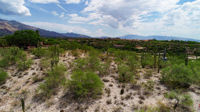 Tucson Residential Lots & Land For Sale: 6041 N Vista Valverde #2