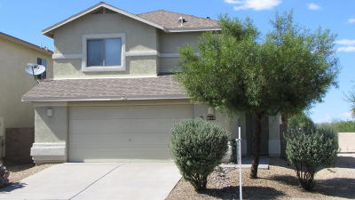 Pima County Single Family Home For Sale: 2412 W Tyler River Drive