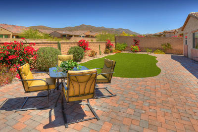 Marana Single Family Home For Sale: 6608 W Whispering Windmill Lane