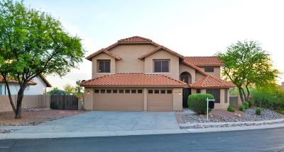 Oro Valley Single Family Home For Sale: 11821 N Dragoon Springs Drive