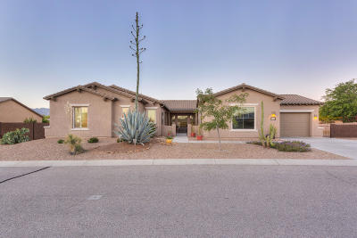 Single Family Home For Sale: 9605 S Camino Cabalgata