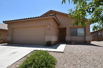 Marana Single Family Home Active Contingent: 11123 W Flycatcher Drive