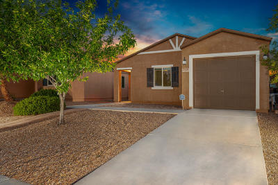Pima County, Pinal County Single Family Home Active Contingent: 7020 S Red Maids Drive